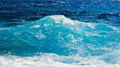 Mengapa energi air sangat penting untuk makhluk hidup