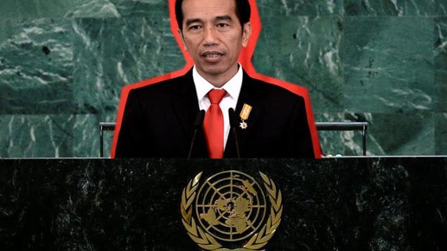 Perdana! Jokowi Akan Pidato di Sidang Umum PBB... tapi Secara Virtual