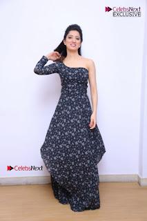 Richa Panai Stills in One Shoulder Floral Long Dress at Rakshaka Bhatudu Movie Interview 11th May 2017