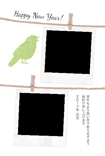 二枚のポラロイド写真フレームと鳥のガーリー年賀状(酉年・写真フレーム)