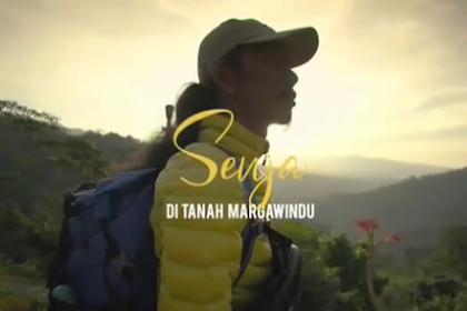 Kebun Teh Margawindu Sumedang: Surganya Para Penyair Semesta, Juga Senja