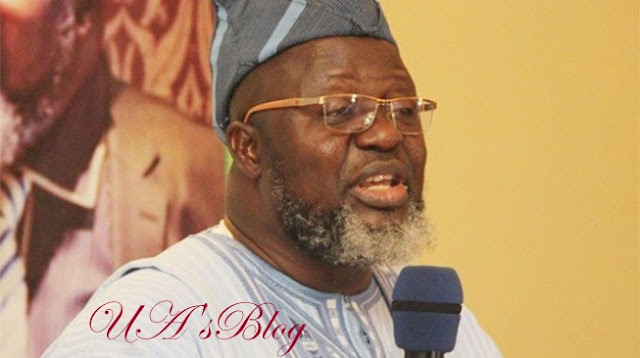 Oyo guber primary: 'You don't have NYSC certificate' – APC drops Buhari's minister, Shittu