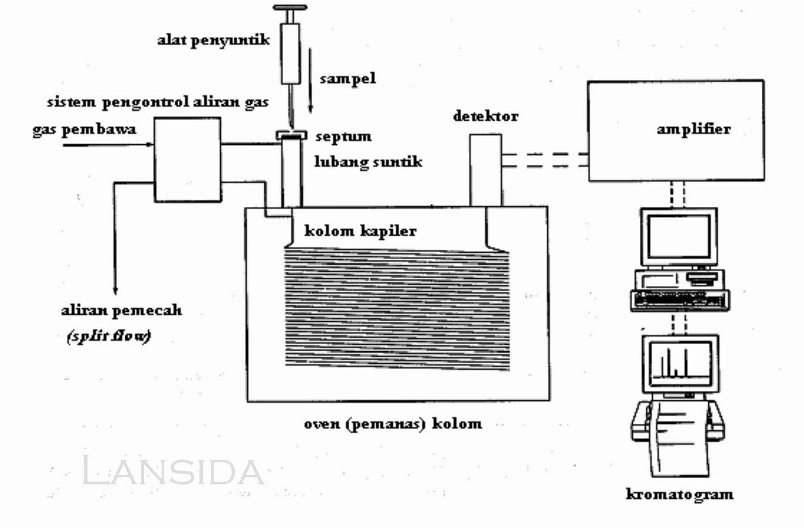 Faithful Kromatografi Gas