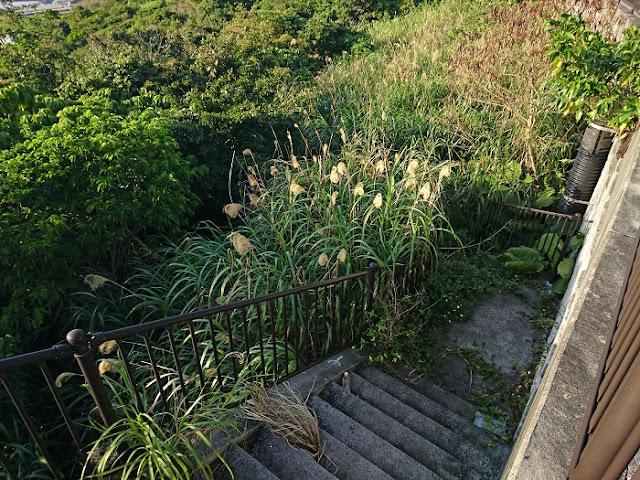 上稲福集落の西側にある階段の写真