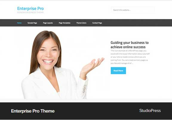 Enterprise Pro Theme Award Winning Pro Themes for Wordpress Blog : Award Winning Blog