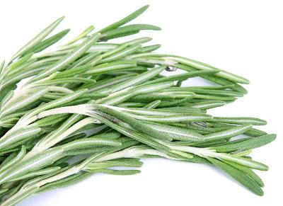 fresh-organic-rosemary-herbs