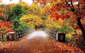 Japan Autumn 7D6N <br/> Rp 10,000,000