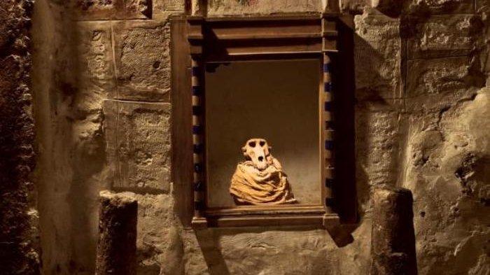 Cara dan Proses Rumit Pembuatan Mumi di Zaman Mesir Kuno