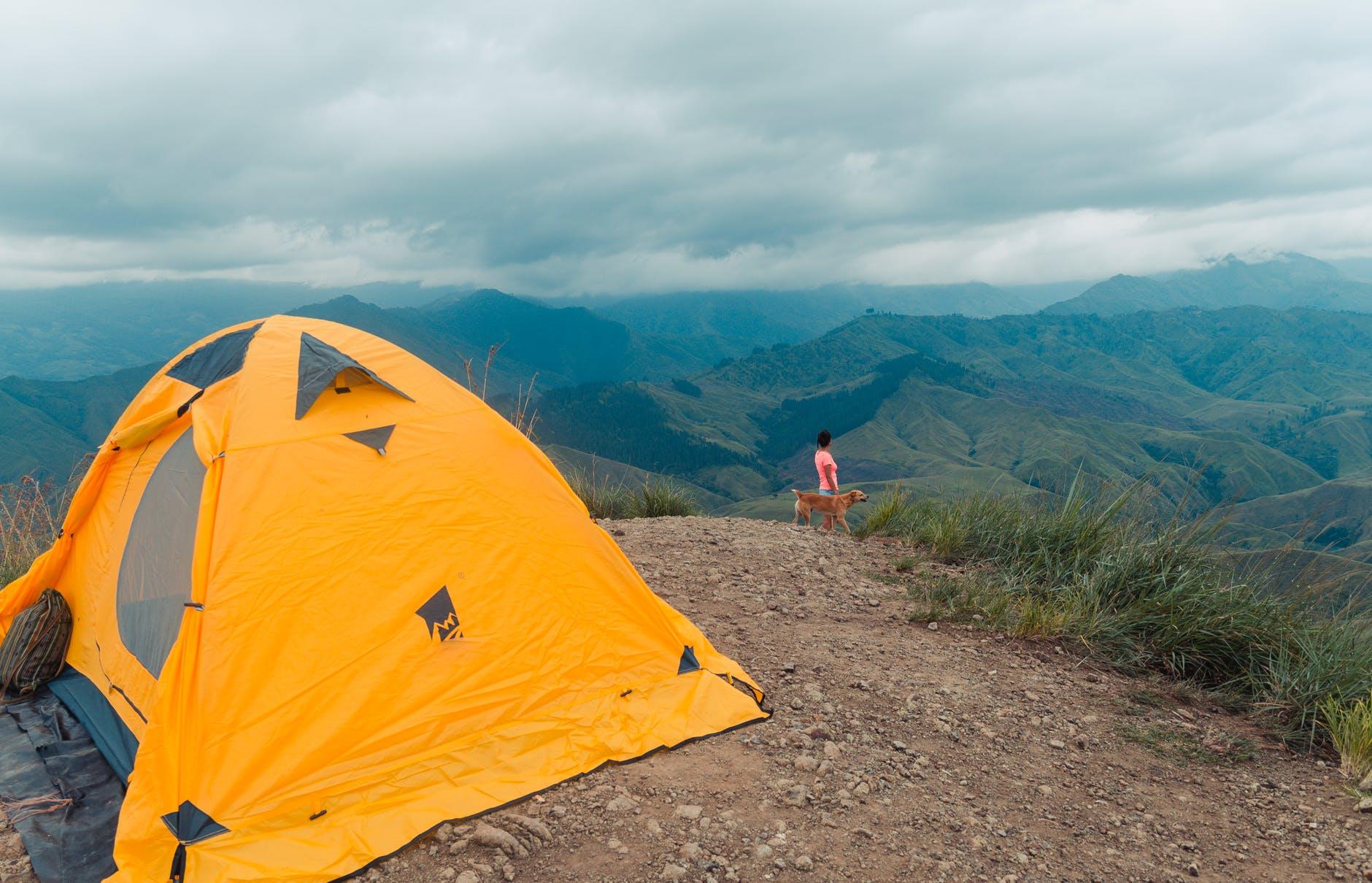 De quoi avez-vous besoin pour faire du camping avec des animaux?