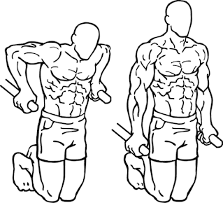 Dips, compound exercise, compound exercises for triceps, tricep