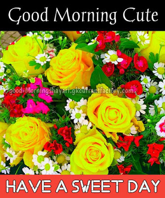 Good Morning Images With Flowers, Good Morning Flowers Images, Good Morning Flowers Photos & Pics, Good Morning Images With Flowers Free Download, Good Morning Flowers Love, Beautiful Good Morning Flowers Images
