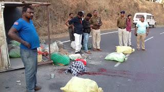 कुंडाली हर्रई के पास हुआ भीषण सड़क हादसा
