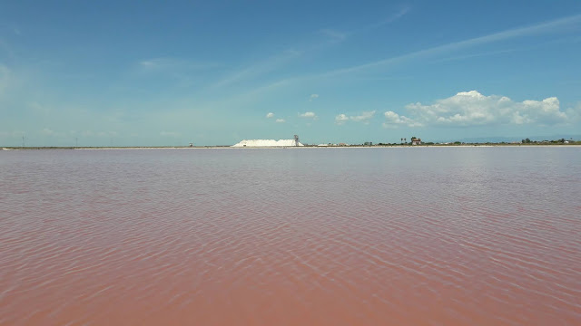 lago rosa salune