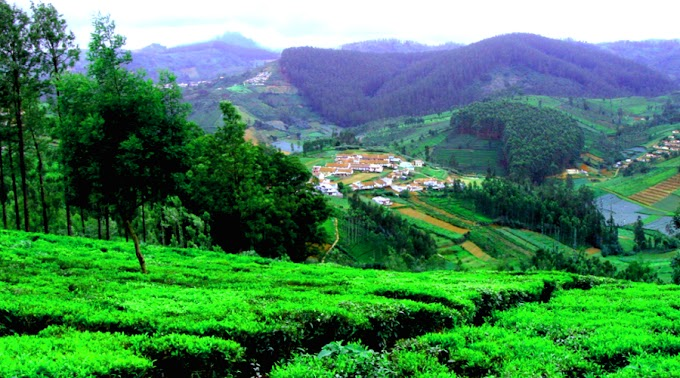 Ooty Hill Station , Tourist Place in Ooty, How to reach Ooty, Top 10 Hill Station in India