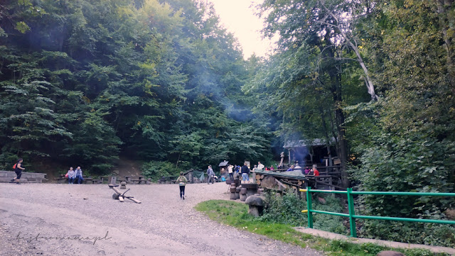 czechy leśny bar
