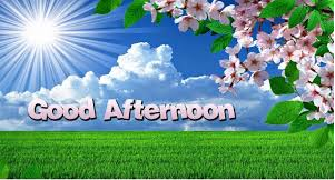 Best Good Afternoon Sms Status Shayari Wishes In Hindi