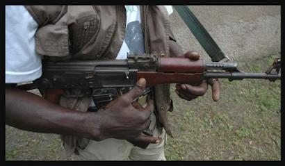 Gunmen Raid Over 40 Farmers In Zamfara