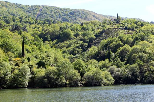 ribeira-sacra-camino-de-santiago-de-invierno-terrazas-vides-rio-sil