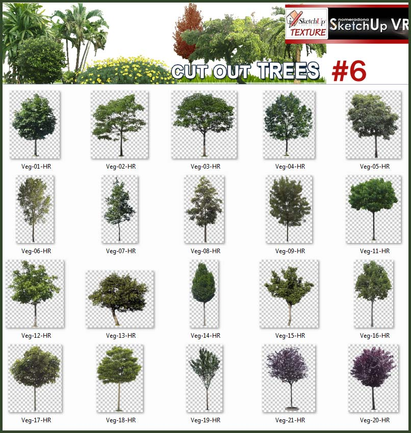 SKETCHUP TEXTURE: CUT OUT TREES