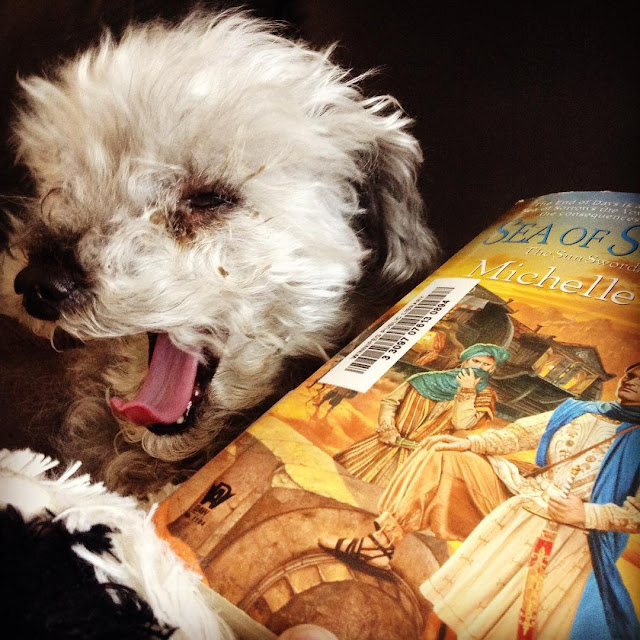 Murchie yawns wide, his little pink tongue curled at the end. He sits slightly behind a paperback copy of Sea of Sorrows. The book's gold-toned cover features two people in elaborate desert robes standing beside a fallen column. Wooden caravans are visible behind them.
