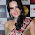 Tulip Joshi husband, captain nair, marriage, age, mother, movies, hot, instagram, wiki, biography