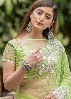 Green Heavy Border Embroidered Net Saree indian party dress