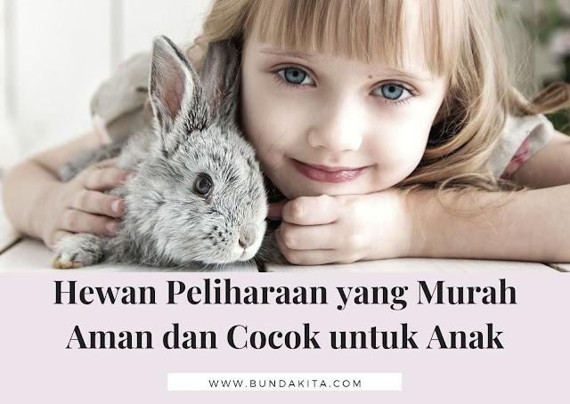 Hewan Peliharaan yang Murah dan Aman Cocok untuk Anak