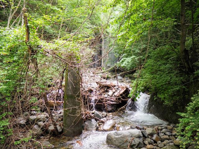 西沢渓谷 森林軌道の橋脚跡