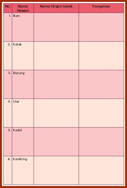 Kunci Jawaban Halaman 11 12 14 17 18 19 Kelas 5 Tema 1 Buku Tematik Siswa Kumpulan Soal Ujian