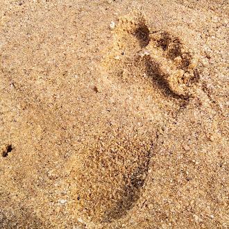 Foot print | sand