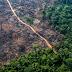 De acordo com Inpe, há avanços significativos na área com avisos de desmatamento entre 2018 e 2019.