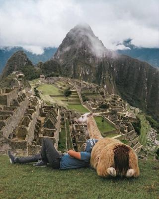 Foto tumblr en Machu Picchu con llama