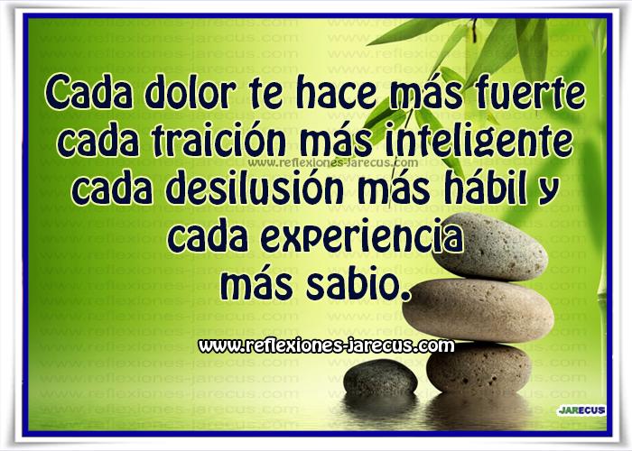 Cada dolor te hace más fuerte, cada traición más inteligente, cada desilusión más hábil y cada experiencia más sabio.
