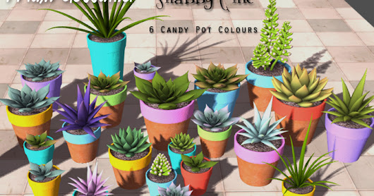 Home and Garden - Candy Pots with Succulents