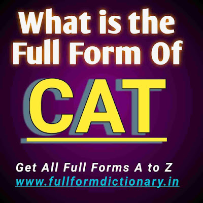 Full Form of CAT, Additional Information of the full form of CAT