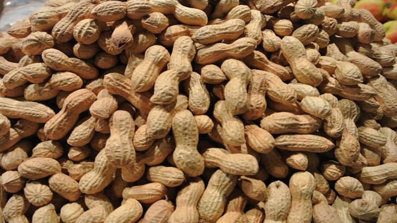 eat peanut