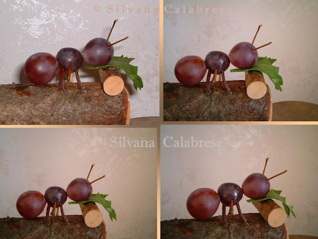 Intaglio frutta verdura formica uva Silvana Calabrese - Blog