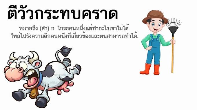 ตีวัวกระทบคราด หมายถึงอะไร ?