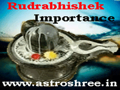 astrologer for rudrabhishek