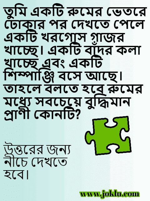 Smart animal in the room Bengali riddle