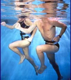 Water Exercises Ma Petite Niche