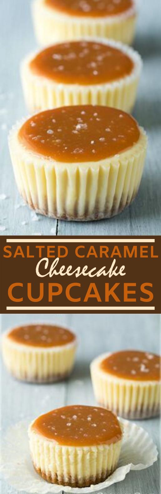 Mini Cheesecakes #cake #desserts #cheesecake #baking #cupcakes