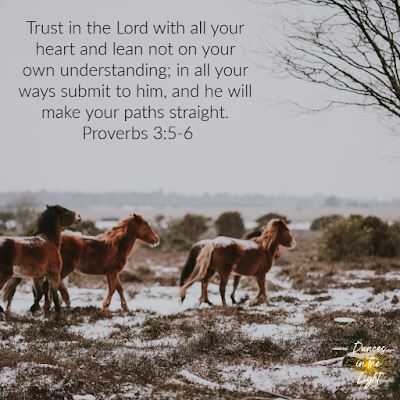 Trust in the Lord with all your heart and lean not on your own understanding; in all your ways submit to him, and he will make your paths straight. Proverbs 3:5-6