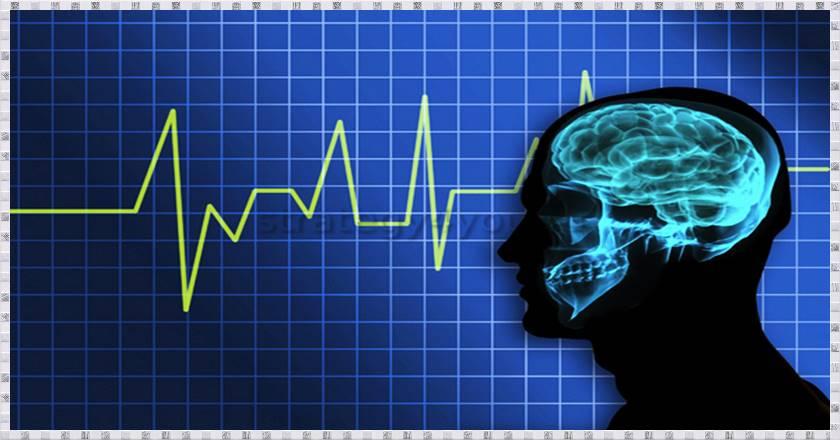 Что нужно знать о сигналах Форекс. Основы трейдинг