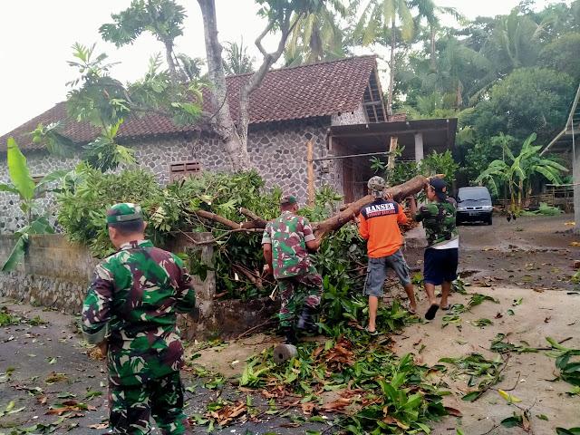 TNI Bersama Masyarakat Dan Relawan Mengevakuasi Pohon Tumbang