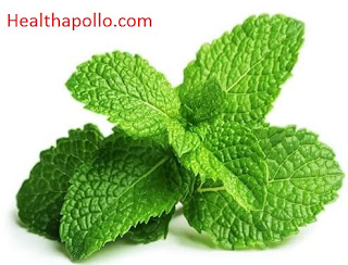 Menthol leaves for Cough