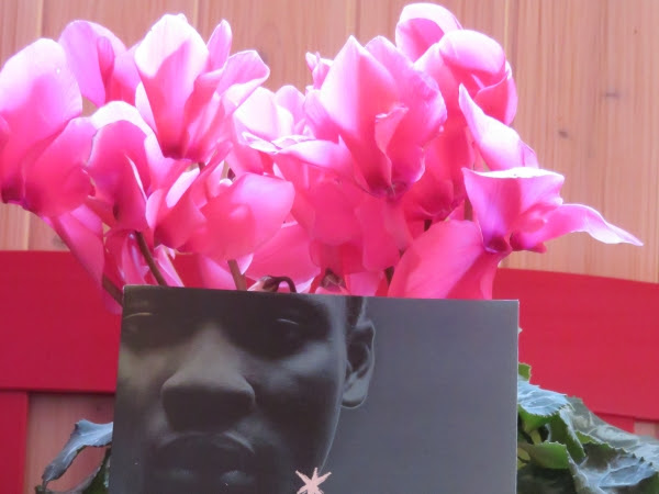 [Concours] Calendrier de l'avent 2017 - Marche à l'étoile d'Hélène Montardre - Jusqu'au 14/12