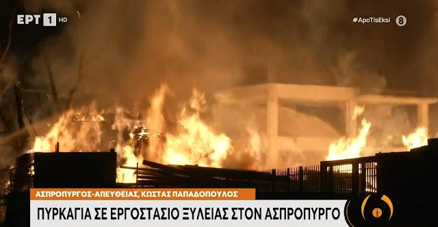 Στις φλόγες εργοστάσιο ξυλείας στον Ασπρόπυργο (βίντεο)