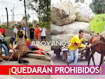 Vehículos de tracción animal quedarán prohibidos en Colombia