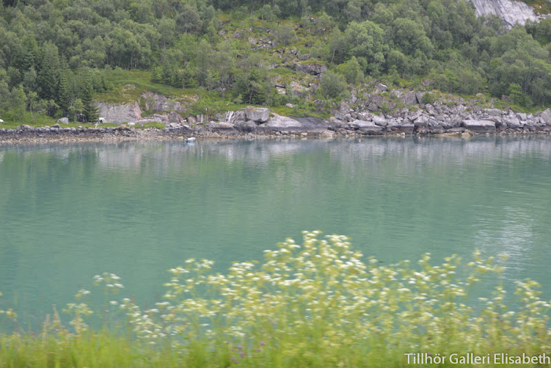 Husbilen Dettan: Resan till Norrland och Norge